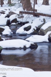 A Stream in Winter in Webb Mountain Park