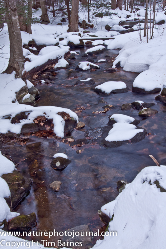 Stream in Webb Moutain Park (Monroe, Connecticut) during winter