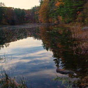 Pond at Haystack Mountain State Park in Norfolk, Connecticut