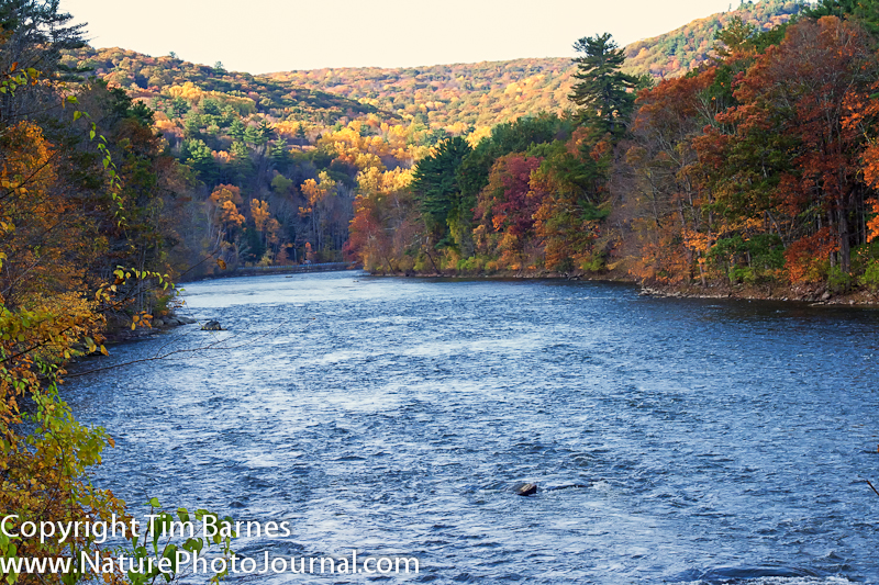 View of the Housatonic River from Housatonic Meadows State Park