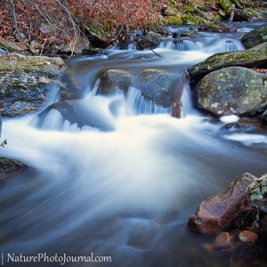 Spruce Brook In Naugatuck State Forest