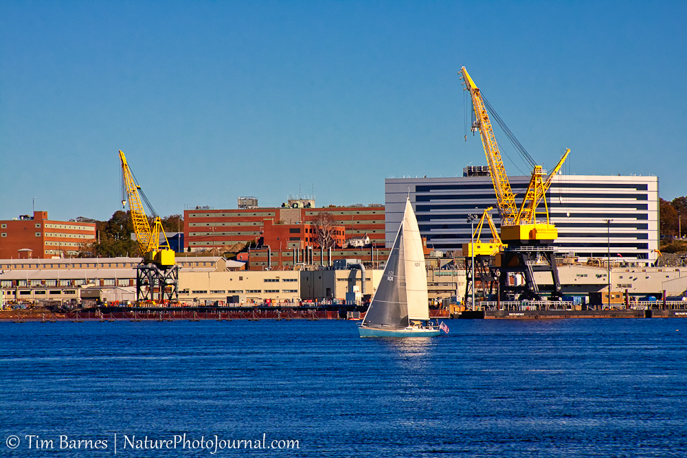 Sailboat and cranes in New London, Connecticut